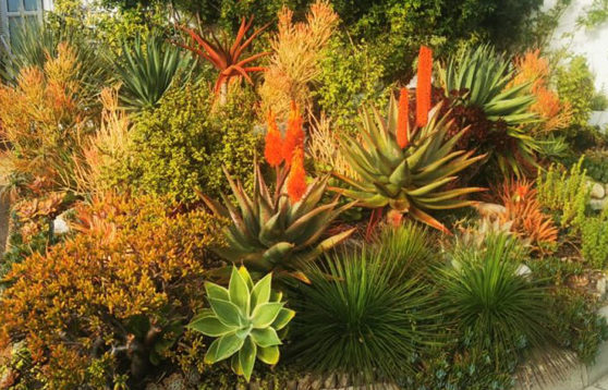 marina-gardens